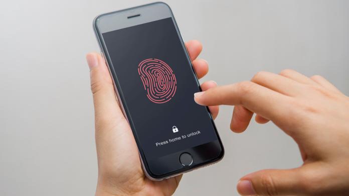 El INAI interpondrá un recurso de inconstitucionalidad contra el padrón biométrico